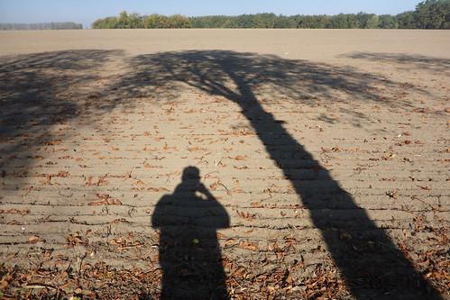 Porträt des Künstlers als sein Schatten