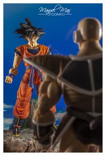 S.H.Figuarts - Son Goku (A Saiyan raised on Earth)   by manumasfotografo