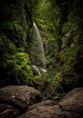 Cascada del Tilo, La Palma