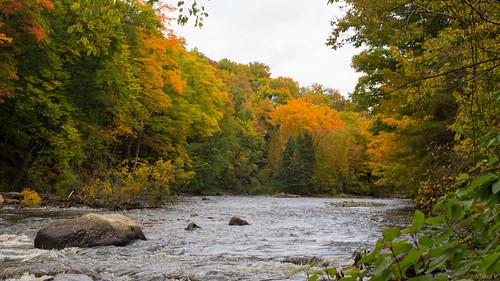québec canada ca automne autumnrivièresaintcharles parcchauveau autumn rivièresaintcharles autumnsaintcharlesriver chauveaupark quebec