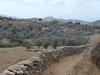 Naxos, cesta k chrámu bohyně Démétér, foto: Petr Nejedlý