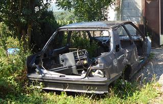 Peugeot 309 remains   by Spottedlaurel