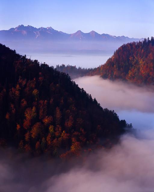 Tatra muntains seen from Sokolica