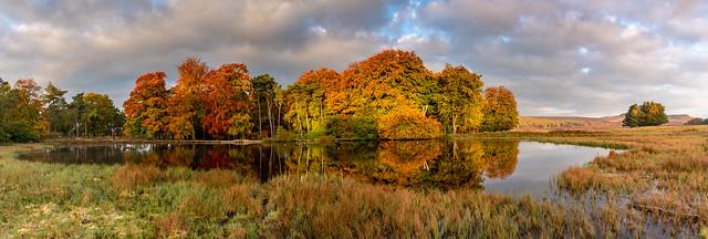 Autumn at Longshaw