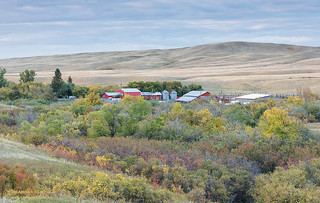 Autumn in Cypress Hills, Saskatchewan   by Branimir Gjetvaj