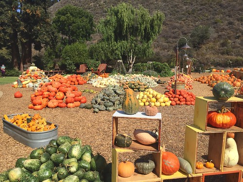Earthbound Farms Carmel Valley | by suendercafe