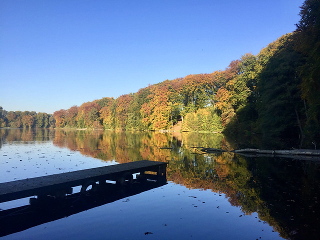 Herbst am Huwenowsee