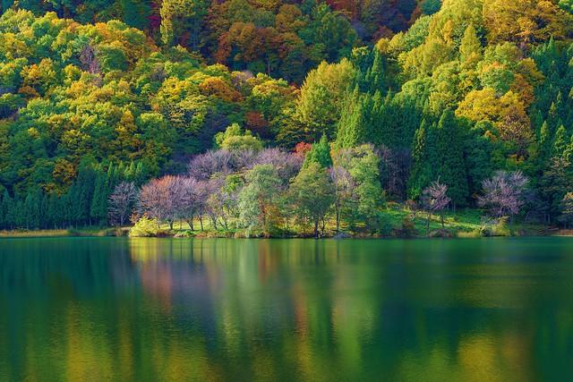 秋の中綱湖