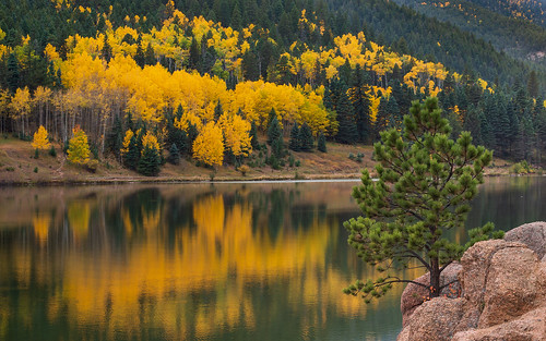 autumn fall foliage aspen colorado co lakeisabel sanisabelnationalforest trees reflection lake water nikond800 nikonafnikkor80200mmf28d