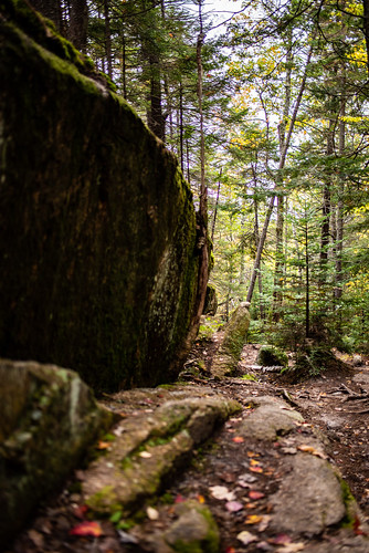 Welch-Dickey Trail Loop | by eric_wheeler