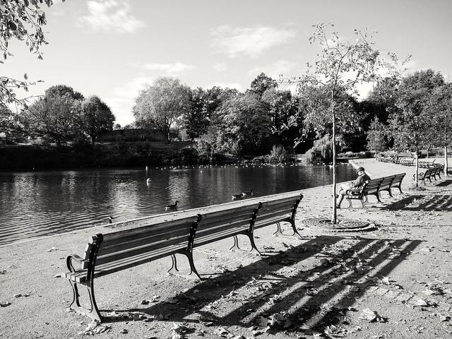 Mote Park shadows