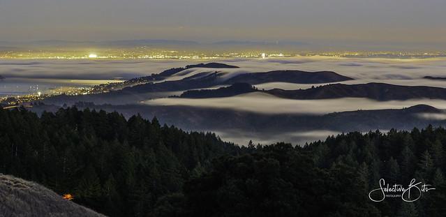 Misty Harbor