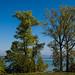 Lake Constance by Bottighofen/TG