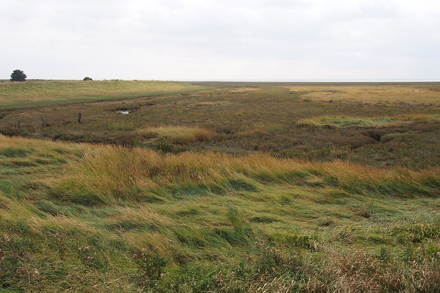 The sea wall near Wrangle