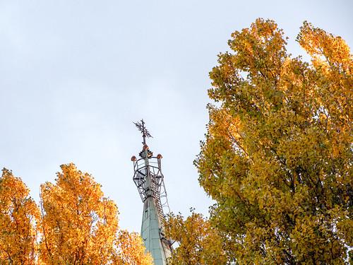 Herbst | by Pfarrei St. Bonifatius Berlin