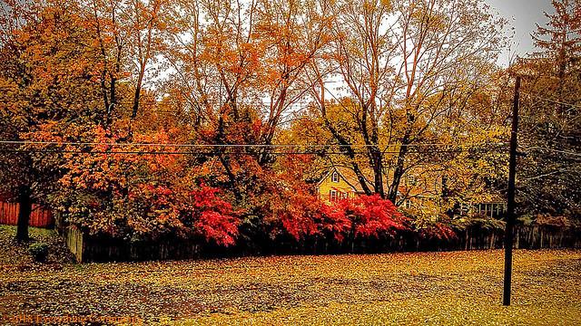 Autumn in New England - Fallin' Wonderful!