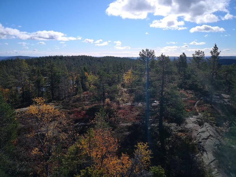 38-Utsikt sørover fra Hovlandsvarden