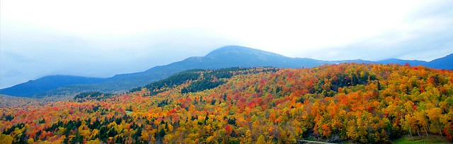 White Mountain Landscape