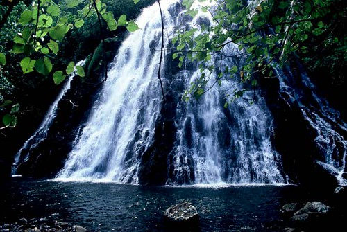 ocean white green nature water beautiful topv111 landscape island waterfall pond natural pacific fresh exotic tropical fsm micronesia swimm pohnpei firsttheearth worldwaterfallssurvey southpacificmicronesia