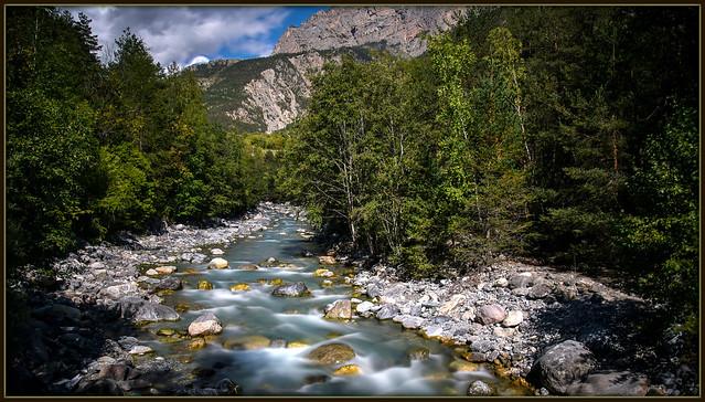 Entre eau et forêt