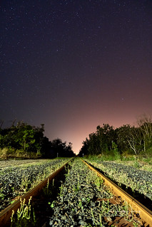 Byron Bay Old Railway Under The Stars | by boxyinfinity