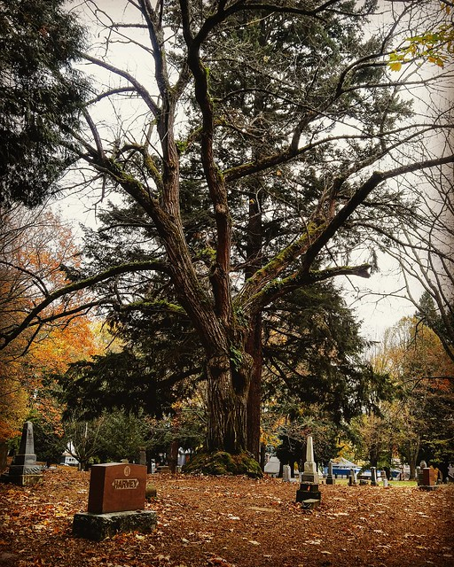 Lone fir cemetery. Portland Oregon.