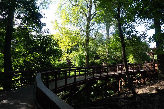 Cancer Survivor's Park and Falls Park-049
