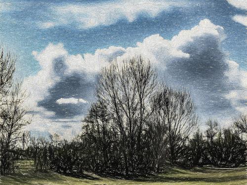 america bakersfield california cloud jfflickr kerncounty painting park photosbydavid plant postedonflickr postedong sky tree unitedstates usa yokutspark