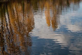 Reflets d'eau | by christineverger