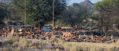 afrique namibie okahandja otjozondjuparegion na afric namibia désert etosha fauve dunesoiseaux rapace philippelphotography