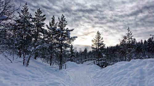 snow sony rx10 finland lapland saariselkä sunset footpath dxo photolab against light bridge