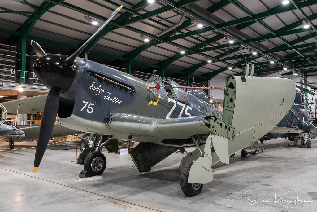 Z2033 - Fairey Firefly TT.1 'Evelyn Tentions'
