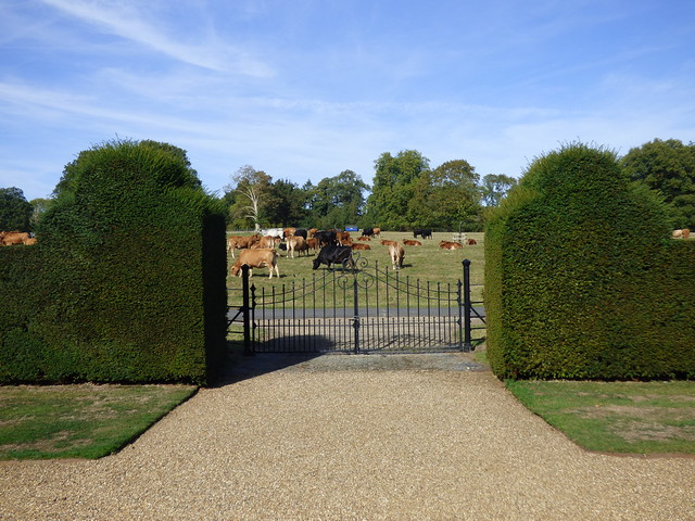 Gate to the cow field, Godinton House & Gardens