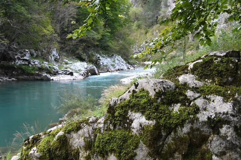 Morača-Schlucht
