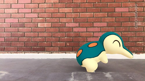 155 Cyndaquil (position=right)