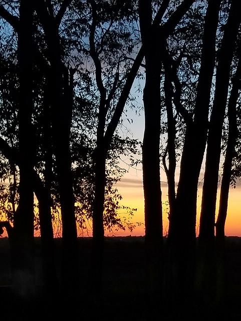 Sunset Silhouette - (In Explore)