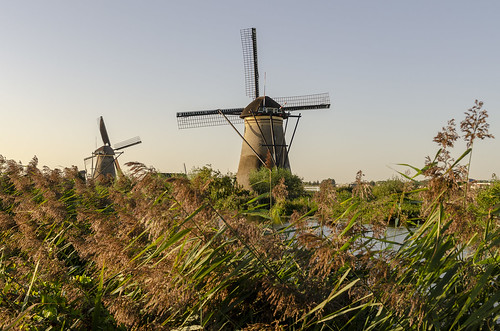 kinderdijk netherlands work production water control windmills power pump reeds landscape house home architecture