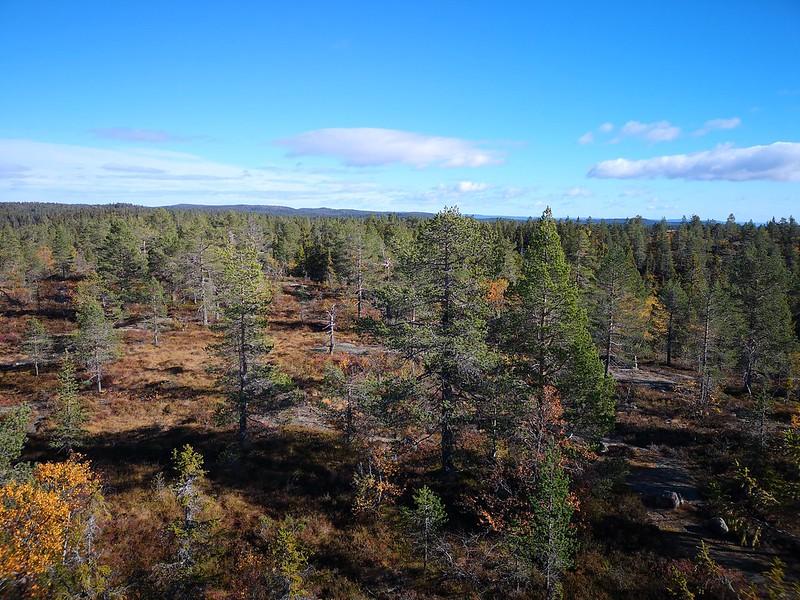 37-Utsikt østover fra Hovlandsvarden