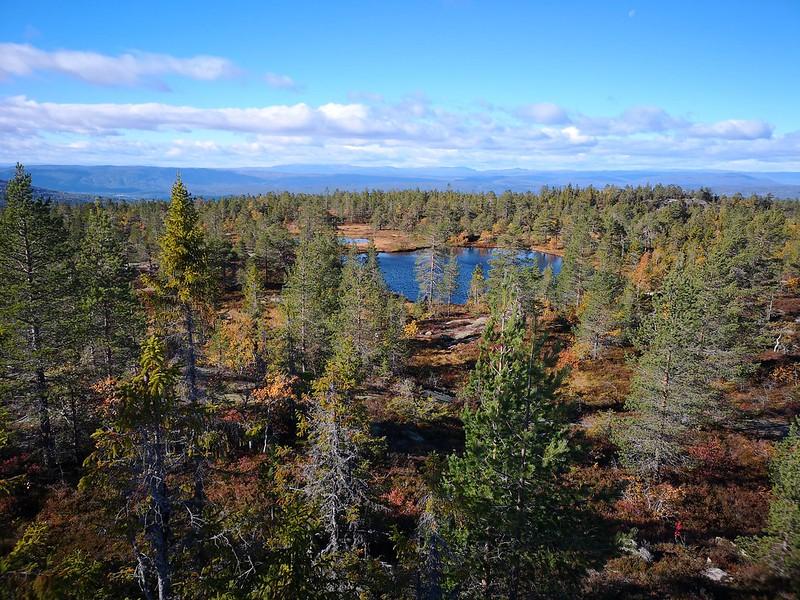 36-Utsikt vestover fra Hovlandsvarden