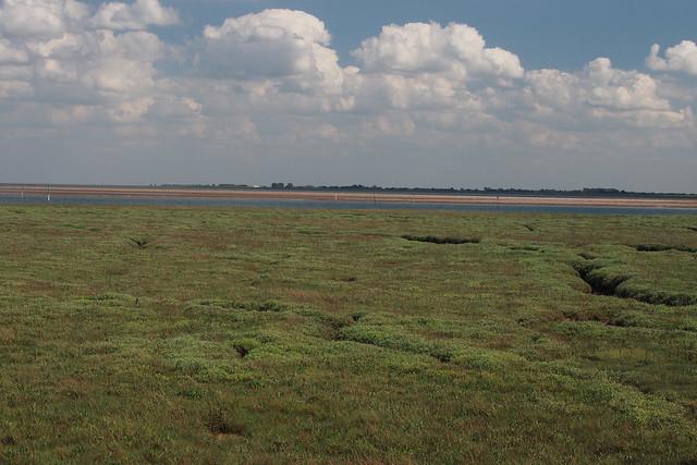 Frampton Marsh and the Wash