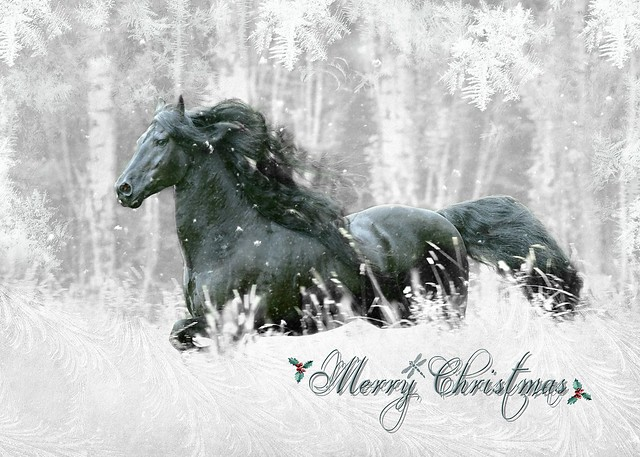all the best of the season to you & yours . . .