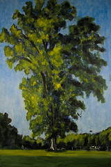Grand Old Tree (2004)