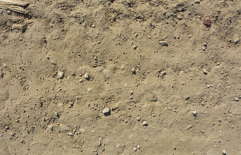 Brown Ground Texture #04