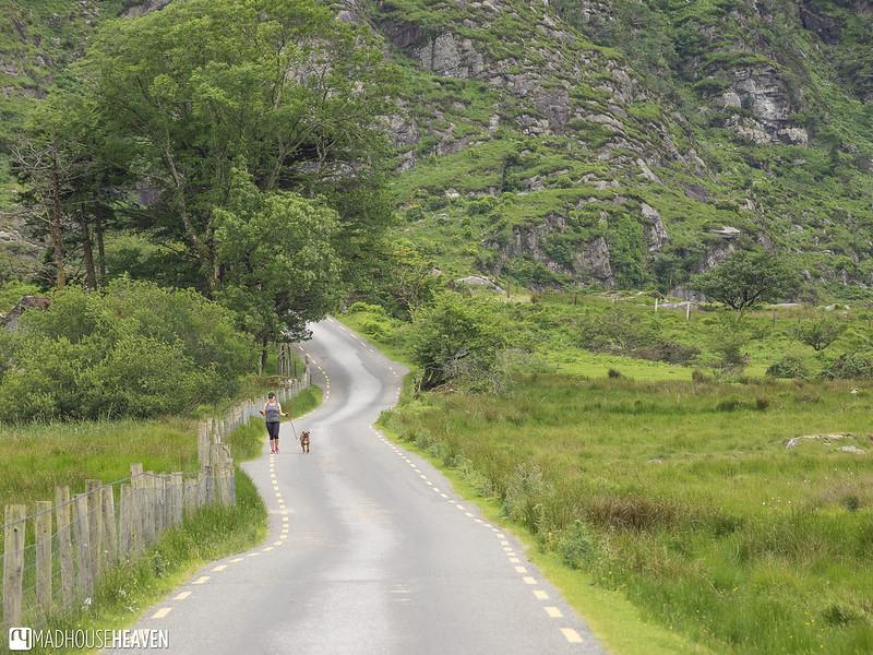 Ireland - 0228