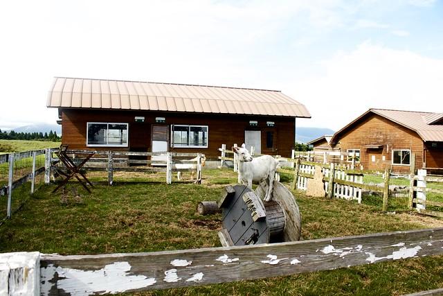 Aso Farmland