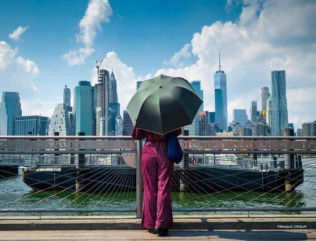The New Yorkers - Facing the skyline