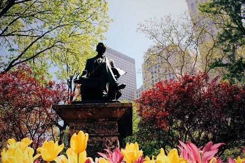 Madison square park | by Jeffrey