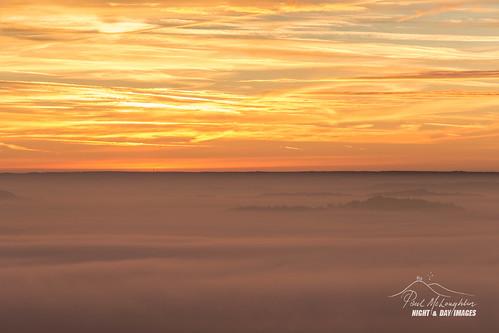 devon trees raddonhill sunrise thorverton fog exe mist crediton valley wood