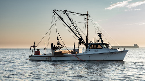 Photo of fishing boat on the bay
