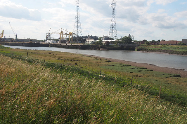 The Haven (River Witham) near Boston